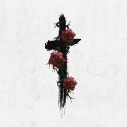 Roses (Imanbek Remix) - Roses (Imanbek Remix) mp3 download