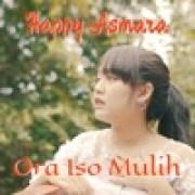download lagu Happy Asmara Ora Iso Mulih