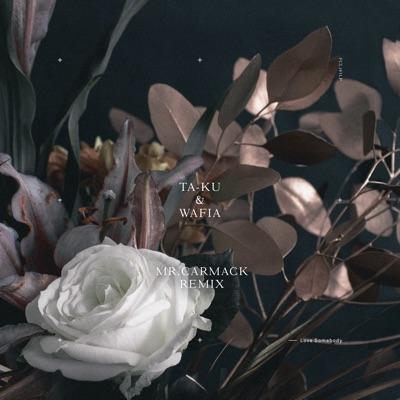 Love Somebody (Mr. Carmack Remix) - Ta-Ku & Wafia mp3 download
