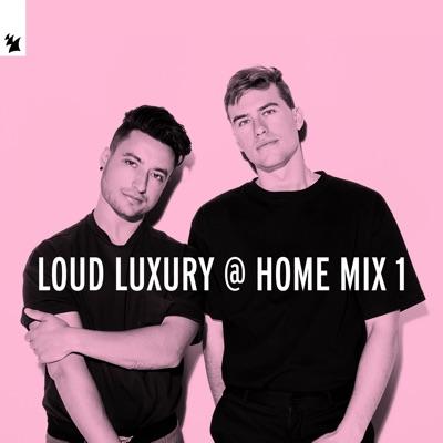 Body [Mixed] - Loud Luxury Feat. brando mp3 download