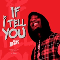 If I Tell You - Single - Flipp Dinero mp3 download