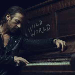 Wild World - Wild World mp3 download