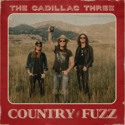 COUNTRY FUZZ - COUNTRY FUZZ mp3 download