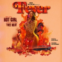 Fever - Megan Thee Stallion mp3 download