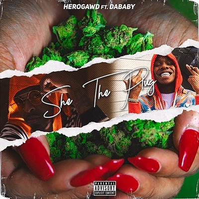 She the Plug (feat. DaBaby) - Single - HeroGawd mp3 download