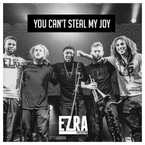 You Can't Steal My Joy - You Can't Steal My Joy mp3 download