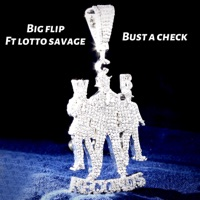 Bust a Check (feat. Lotto Savage) - Single - Big Flip mp3 download