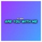 download lagu Dj Desa Are You with Me