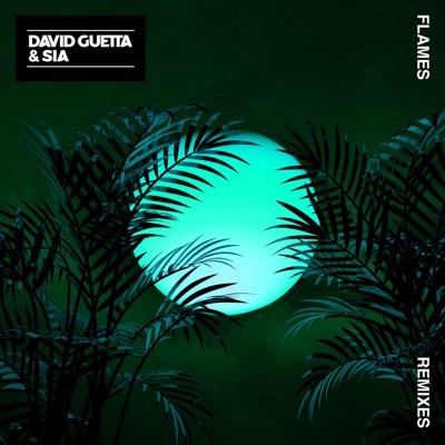 Flames (Robin Schulz Remix) - David Guetta & Sia mp3 download