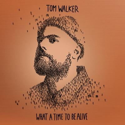 Heartbeats - Tom Walker mp3 download