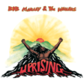 Free Download Bob Marley & The Wailers Could You Be Loved Mp3