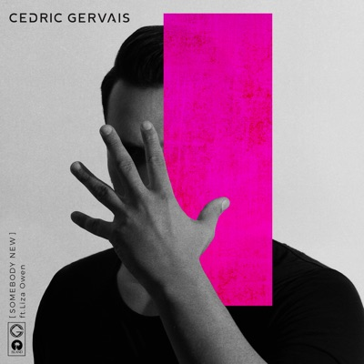 Somebody New - Cedric Gervais Feat. Liza Owen mp3 download