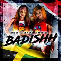 Badishh (Instrumental) Anson Productions