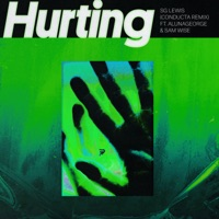 Hurting (Conducta Remix) [feat. AlunaGeorge & Sam Wise] - Single - SG Lewis