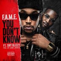 You Don't Know (feat. Shy Glizzy) - Single - F.A.M.E. mp3 download