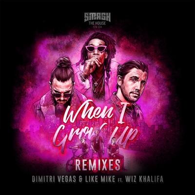 When I Grow Up (Dvlm X Brennan Heart VIP Mix) - Dimitri Vegas & Like Mike Feat. Wiz Khalifa mp3 download