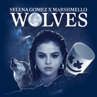Wolves Selena Gomez & Marshmello MP3