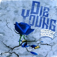 Die Young - Single - Roddy Ricch mp3 download