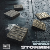 Stormin (feat. NBA Youngboy & Moneybagg Yo) - Single - Trappa Madeit mp3 download