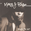 Mary J. Blige - What's the 411?  artwork