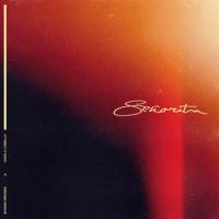 Shawn Mendes & Camila Cabello - Señorita Mp3