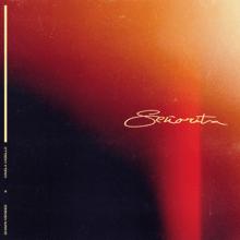 Shawn Mendes & Camila Cabello - Señorita