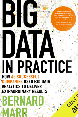 Big Data in Practice: How 45 Successful Companies Used Big Data Analytics to Deliver Extraordinary Results (Unabridged) - Bernard Marr