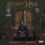 "Medication (feat. Stephen Marley) - Damian ""Jr. Gong"" Marley"
