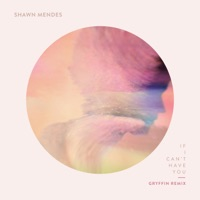 If I Can't Have You (Gryffin Remix) - Single - Shawn Mendes & Gryffin mp3 download