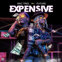 Expensive (feat. Future) - Single - Mac Tree mp3 download