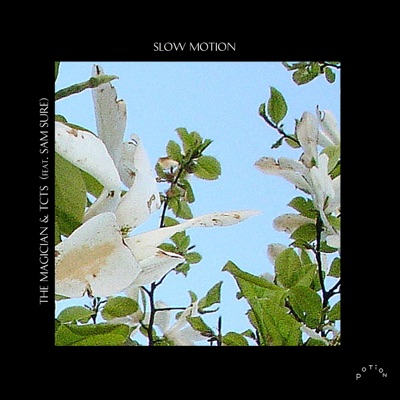 Slow Motion - The Magician & TCTS Feat. Sam Sure mp3 download