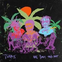 Turks (feat. Travis Scott) - Single - NAV & Gunna mp3 download