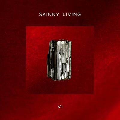 Let Me In - Skinny Living mp3 download