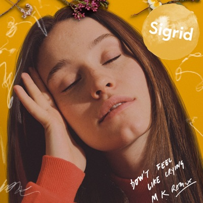 Don't Feel Like Crying (Mk Remix) - Sigrid mp3 download