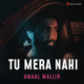 Amaal Mallik - Tu Mera Nahi - Single