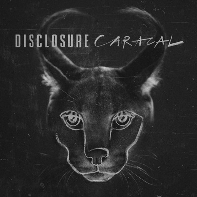 Superego - Disclosure Feat. Nao mp3 download