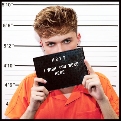 I Wish You Were Here - HRVY mp3 download