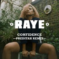 Confidence (feat. Maleek Berry & Nana Rogues) [Preditah Remix] RAYE