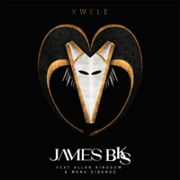 Kwele (feat. Allan Kingdom & Manu Diabango) James BKS MP3