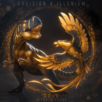 Gold (Stupid Love) [feat. Shallows] Excision & Illenium