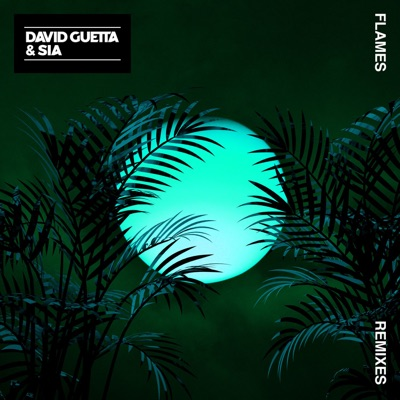Flames (Instrumental) - David Guetta & Sia mp3 download