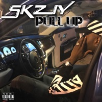 Pull Up - Single - SKZIY mp3 download