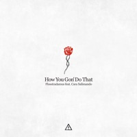 How You Gon' Do That (feat. Cara Salimando) - Single - Flosstradamus mp3 download