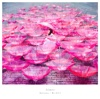 Ref:rain / 眩いばかり - EP