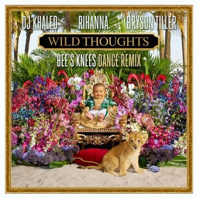Wild Thoughts (Bee's Knees Dance Remix) - DJ Khaled Feat. Rihanna & Bryson Tiller mp3 download
