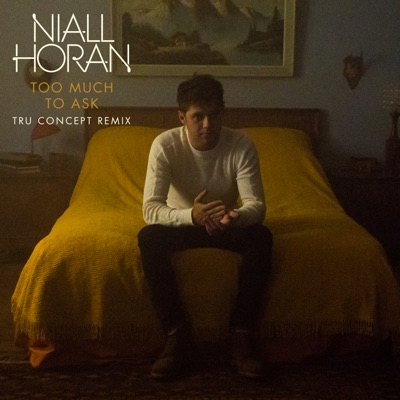 Too Much To Ask (Tru Concept Remix) - Niall Horan mp3 download