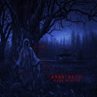 Anesthetic - Mark Morton