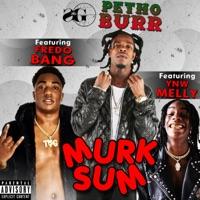 Murk Sum (Feat. YNW Melly, Fredo Bang) - Single - Petho Burr mp3 download