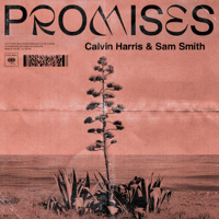 Promises Calvin Harris, Sam Smith