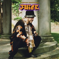 Juice - Single - French Montana mp3 download